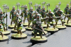 A close-up of the Bossonian Guards