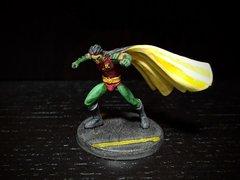 Robin (Tim) front.jpg